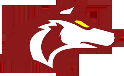 Logo-Vukovi-height250